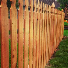 French Gothic Spaced Picket Cedar Fence